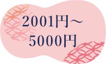 2001~5000