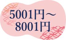 5001~8000